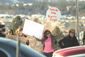 Protesters line the streets at Founders Parkway and Factory Shops Blvd Feb.25. At the same time, trapping of the prairie dogs had begun behind them.